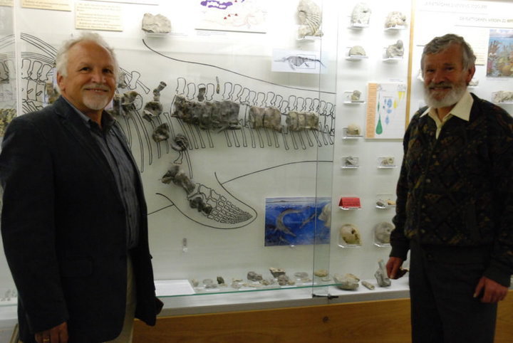 The discoverers of the fossil remains of the ichthyosaurus of the Secëda J. Comploj y M. Strobl in the Museum Gherdëina, 2014